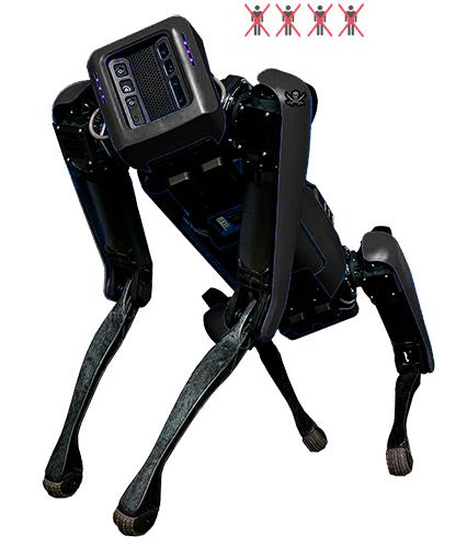 Robots (Robota)